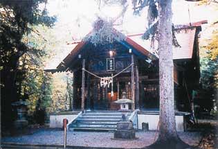 浦臼神社 まるで童話の世界 リスとカタクリ、エゾエンゴサク「春の妖精」場所 北海道浦臼