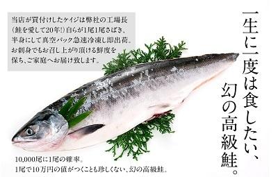 1万分の1 幻の鮭 鮭児 ケイジ 高すぎる 食べてみたい スッキリ!!