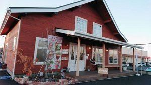 イチゴ農園 Chez Fraise(シェフレ)栃木県小山市 人生の楽園